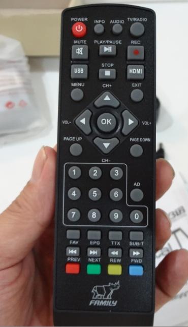 Family-T-030-remote