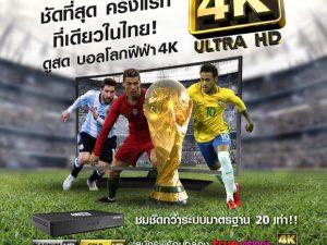 true-4k-world-cup